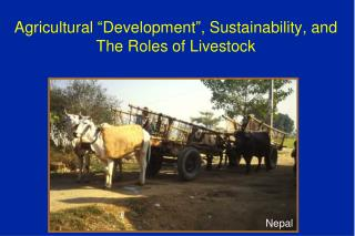 "Agricultural ""Development"", Sustainability, and The Roles of Livestock"