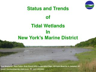 Status and Trends  of Tidal Wetlands In New York's Marine District