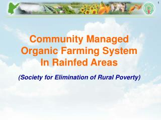 Community Managed  Organic Farming System In Rainfed Areas