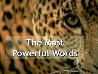 The Most Powerful Words