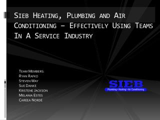 Sieb  Heating, Plumbing and Air Conditioning – Effectively Using Teams In  A  Service Industry