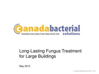 Long-Lasting Fungus Treatment  for Large Buildings May 2013