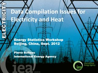 Data Compilation Issues for Electricity and Heat