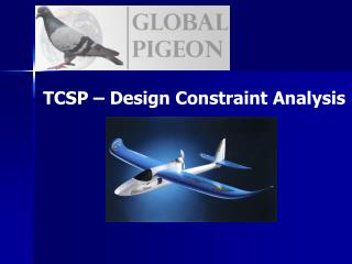 TCSP � Design Constraint Analysis