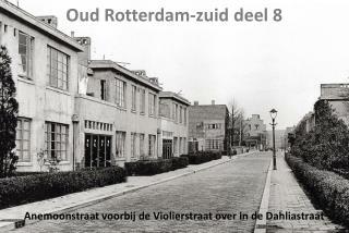 Oud  Rotterdam-zuid  deel 8