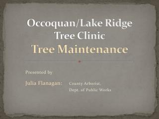 Occoquan/Lake Ridge Tree Clinic Tree  Maintenance