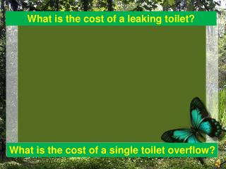 What is the cost of a leaking toilet?