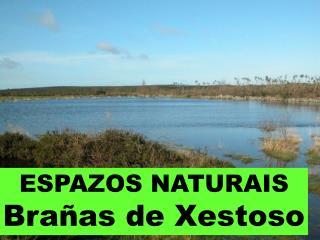 ESPAZOS NATURAIS Brañas de Xestoso