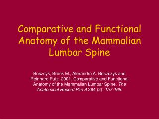 Comparative and Functional Anatomy of the Mammalian Lumbar Spine