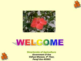 Directorate of Agriculture Government of Goa Vidhyut Bhawan, 4th Floor,  Panaji Goa 403001