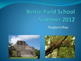 Belize Field School Summer 2012