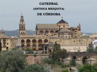 CATEDRAL  (ANTIGUA MEZQUITA)  DE CÓRDOBA