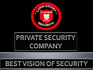 BEST VISION OF SECURITY