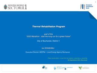 Ion DOGEANU Executive Director, AEEPM – Local Energy Agency Bucharest