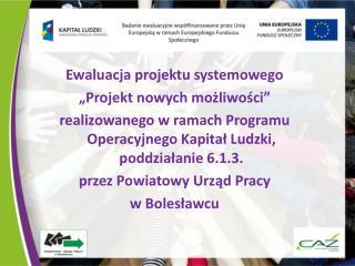 """Ewaluacja projektu systemowego  """"Projekt nowych możliwości"""""""