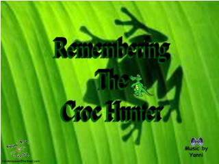 Remembering The Croc Hunter