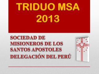 TRIDUO MSA 2013