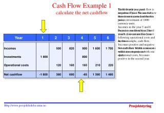 Cash Flow Example 1 calculate the net cashflow