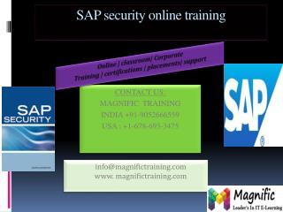 sap security online training in Australia
