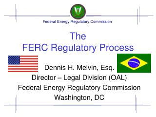 The  FERC Regulatory Process