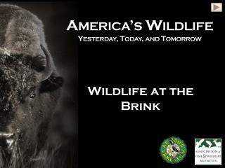 America's Wildlife Yesterday, Today, and Tomorrow