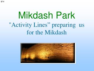 "Mikdash Park ""Activity Lines"" preparing  us for the Mikdash"