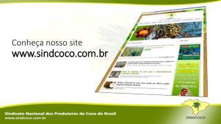 Conheça nosso site sindcoco.br