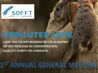1 st  ANNUAL GENERAL MEETING