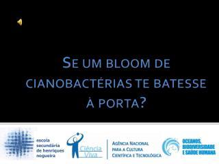 Se um  bloom  de cianobactérias te batesse à porta?