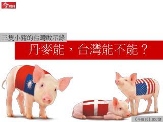 丹麥能,台灣能不能?