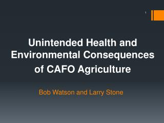 Bob Watson and Larry Stone