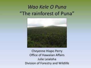 """Wao Kele O Puna """"The rainforest of Puna"""""""