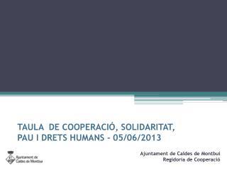 TAULA  DE COOPERACIÓ, SOLIDARITAT,  PAU I DRETS HUMANS - 05/06/2013