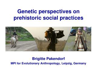 Genetic perspectives on prehistoric social practices
