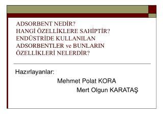 Hazırlayanlar:                          Mehmet Polat KORA