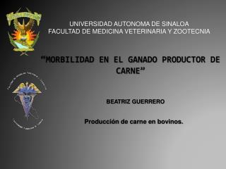 """""""MORBILIDAD EN EL GANADO PRODUCTOR DE CARNE"""""""