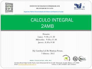 CALCULO INTEGRAL 2AMB