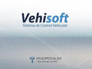 Control Vehicular, verifica :