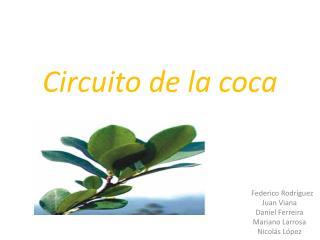 Circuito de la coca