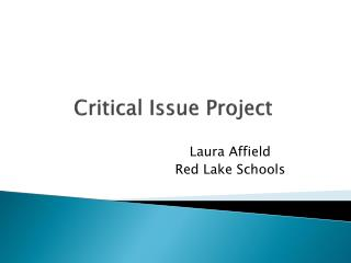 Critical Issue Project