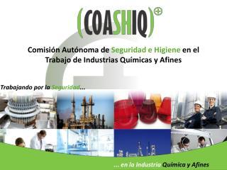 Comisi�n Aut�noma de  Seguridad e Higiene  en el Trabajo de Industrias Qu�micas y Afines