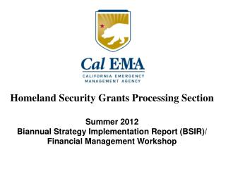 Summer 2012 Biannual Strategy Implementation Report (BSIR)/
