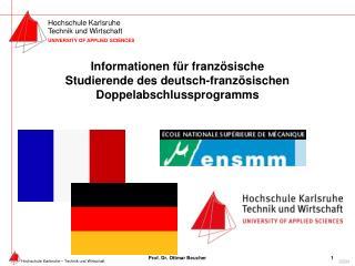 Informationen für französische Studierende des deutsch-französischen Doppelabschlussprogramms