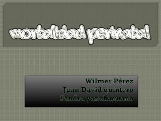 Wilmer Pérez Juan David quintero Sandra yanchaguano