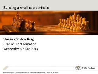 Building a small cap portfolio