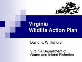 Virginia Wildlife Action Plan