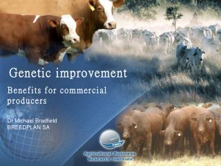 Genetic  improvement