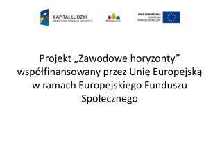 """Cele projektu """"Zawodowe horyzonty"""" realizowane w Zespole Szkół Ekonomiczno – Administracyjnych"""
