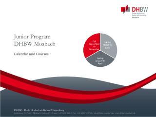 Junior  Program DHBW Mosbach
