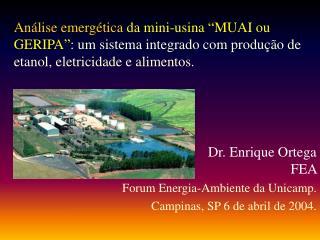 Dr. Enrique Ortega  FEA Forum Energia-Ambiente da Unicamp.   Campinas, SP 6 de abril de 2004.